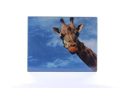 """Podložka na stôl, 440x350 mm, LS """"Žirafa"""""""