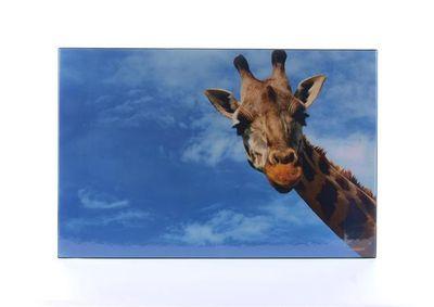"""Podložka na stôl, 580x380 mm, LS """"Žirafa"""""""
